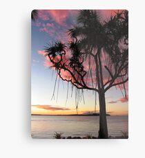 Pandanus Palms Metal Print