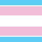 Transgender Pride Flag by ShowYourPRIDE