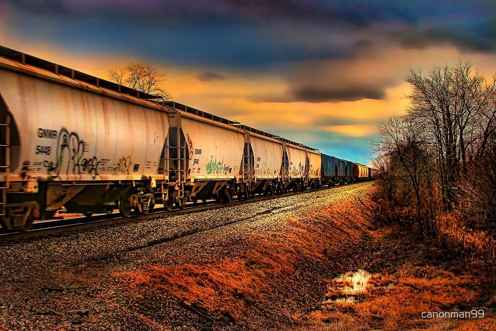 """ The Grain Train "" by canonman99"