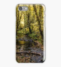 Creeks #44564 iPhone Case/Skin