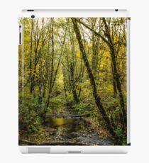 Creeks #88769 iPad Case/Skin
