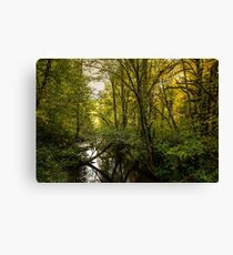 Creeks #5453232 Canvas Print