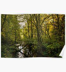 Creeks #5453232 Poster