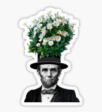 Abe Daisies Sticker