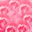 Camellias 7 by Steve Purnell