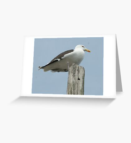 The King of Wickford Harbor Greeting Card