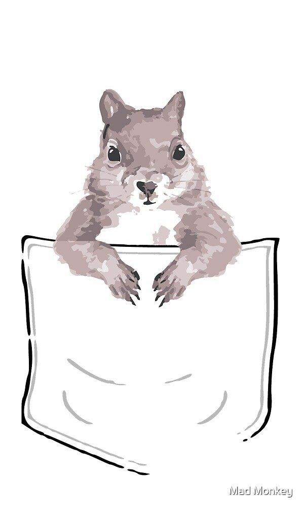 Squirrel in my pocket! by Mad Monkey