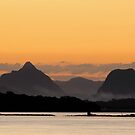 Glass House Mountains  by Barbara Burkhardt