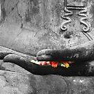 Hand of Buddha by SerenaB