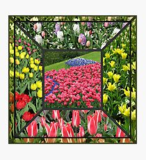 Bold and Beautiful - Keukenhof Tulips Collage Photographic Print