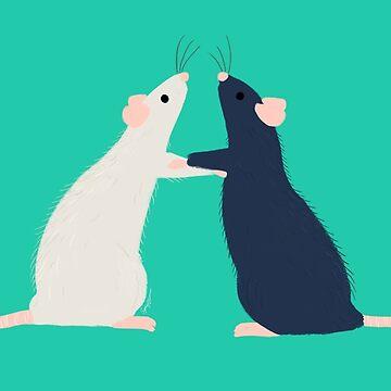 Ratty Love - Boxing by sydneynewman