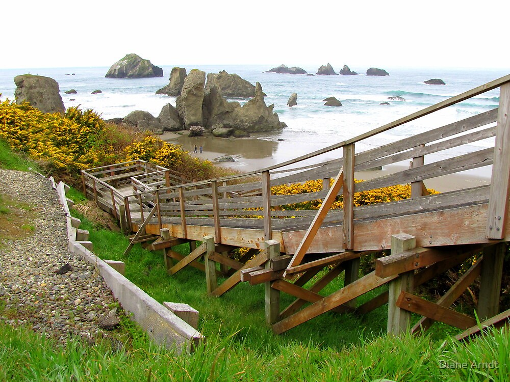 Stair Steps To Bandon Beach...Bandon, Oregon by Diane Arndt