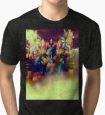 Fairyland Tri-blend T-Shirt