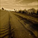 Tracks... by karzy78