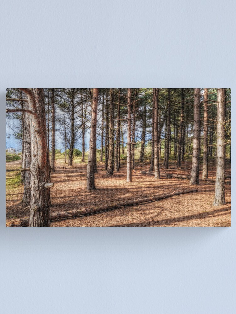 Alternate view of Forest Canvas Print
