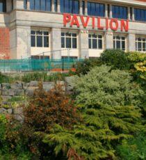 Pavilion Theatre Sticker
