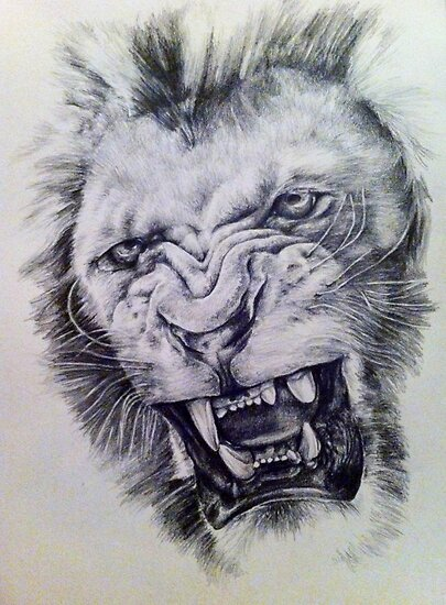 The gallery for --> Snarling Lion Drawing