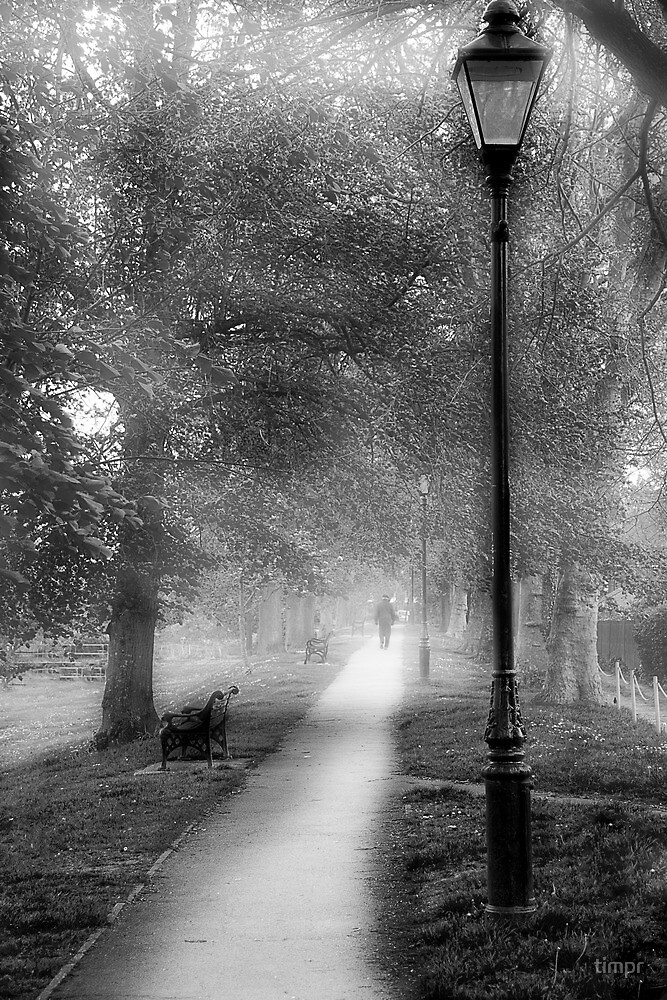 The Long Walk by timpr