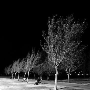 Ridgecrest Park in December by Shutterbug-csg
