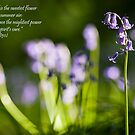 The Bluebell by LazloWoodbine