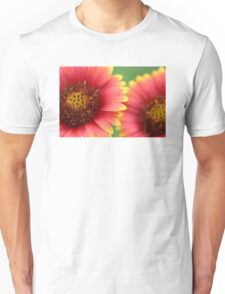Indian Blanket Unisex T-Shirt