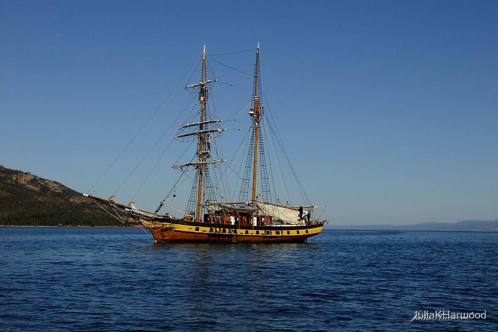 Sailing Away by Julia Harwood