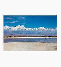 Cejar Pond - Atacama Desert - Chile Photographic Print