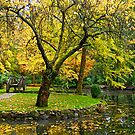 Autumn at the Alfred Nicholas Memorial Gardens, Victoria, Australia. by johnrf