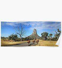 Central Queensland Australia Poster