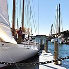 Madeleine__Sailing Transport by Poete100