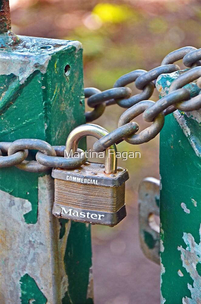 Master Lock by Martina Fagan