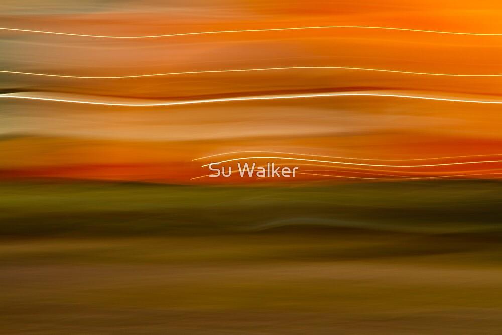 Sweeping Views by Su Walker