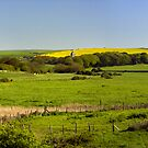 Bishopstone by mikebov