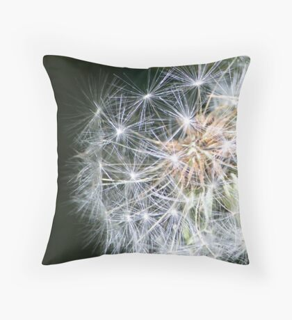 Metaphysics of Now Throw Pillow