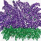 heaven purple grape flowers  by candace lauer