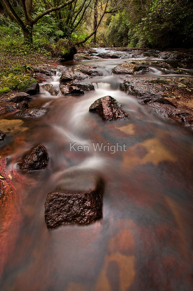 Kaiate Autumn Reds by Ken Wright