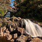 Kaiate autumn sun by Ken Wright