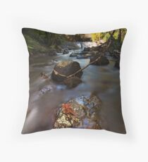 Kaiate copper ferns Throw Pillow