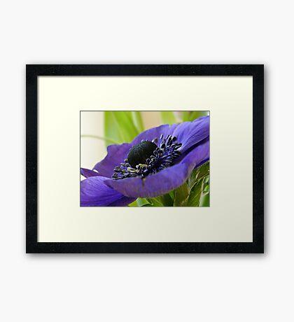 Purple Platter Framed Print