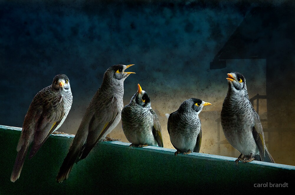 five birdies on a balcony by carol brandt