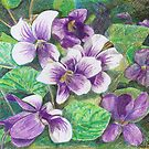 Violets by Sally O'Dell