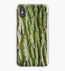 Tree Bark (Poplar Tree) iPhone Case/Skin