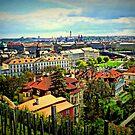 St.Wenceslas vineyard - Prague Castle by Kristina R.