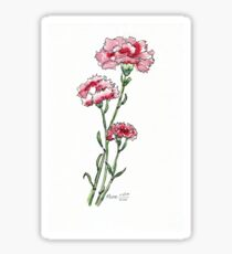 And a Pink Carnation... Sticker