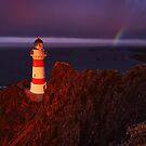 Stormy morning light over Cape Palliser - New Zealand by Mark Shean