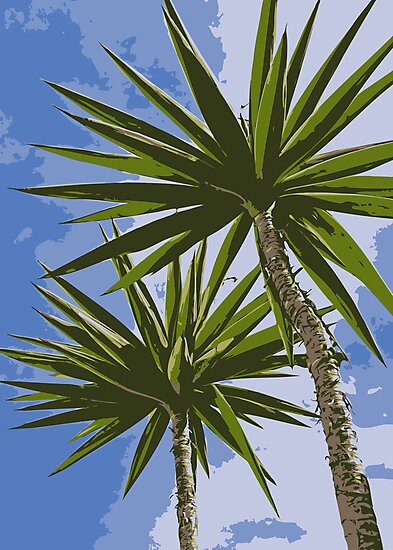 Palm Trees by Vac1