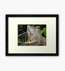 I Like My Suntan - Quiero Mi Bronceado Framed Print