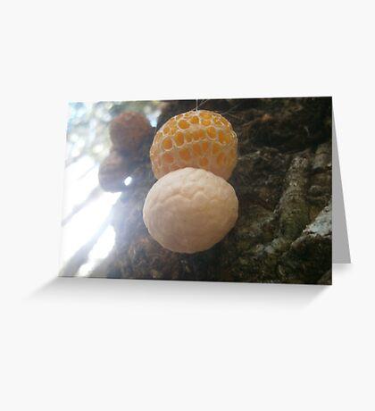 Yellow Fungi Greeting Card