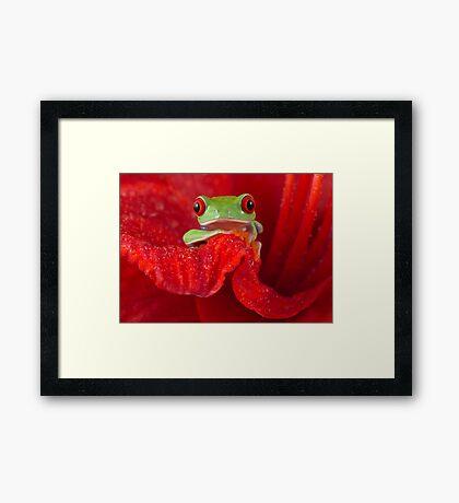 RED Framed Print