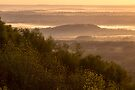 First light in the Severn Valley, Malvern Hills by Cliff Williams